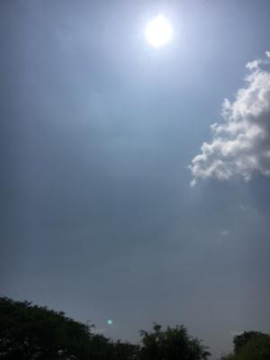 堅田周辺はカンカン照りの真夏のような天気になりました(6月2日10時頃)
