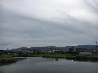 カヤ池から眺めた比叡山。堅田周辺は昼過ぎまでよく晴れていい天気から午後は雲が多くなしました(6月29日15時頃)