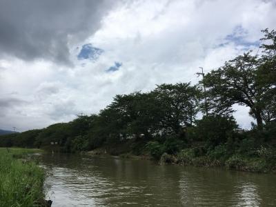 堅田周辺は朝からずっと曇り空で午後は雨になりました
