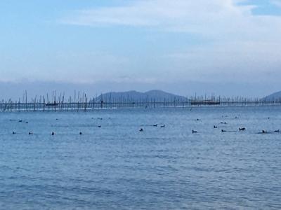 真野浜から眺めた沖島。iPhone6sで撮影