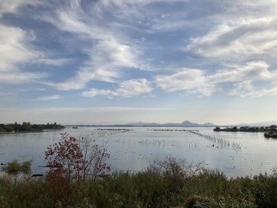 山ノ下湾から眺めた琵琶湖南湖(11月27日9時50分頃)