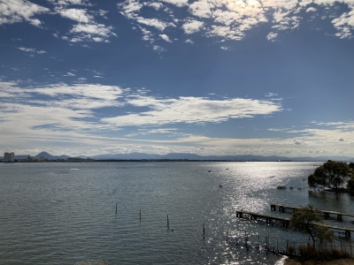 琵琶湖大橋西詰めから眺めた南湖 iPhoneSE2で撮影(11月29日10時30分頃)