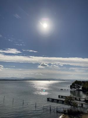 琵琶湖大橋西詰めから眺めた南湖 この頃までは荒れてなかったんですが・・・(11月30日10時30分頃)