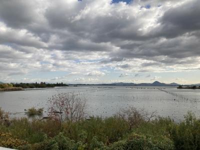 山ノ下湾から眺めた琵琶湖南湖 西風でざわついてますがなんとか釣りはできてます(12月1日10時30分頃)
