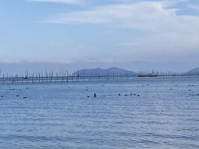 真野浜から眺めた沖島。iPhoneSE2で撮影
