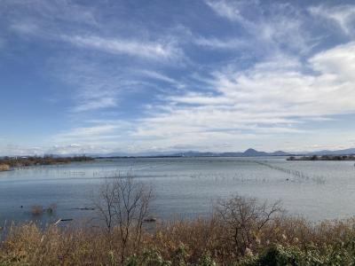 山ノ下湾から眺めた琵琶湖南湖(1月6日11時20分頃)