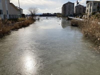 堅田のカヤ池は8日からずっと一部凍結したままです(1月11日12時30分頃)