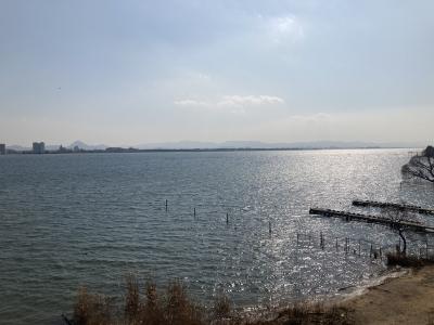 南寄りの強風で大荒れの琵琶湖南湖(2月20日11時40分頃)