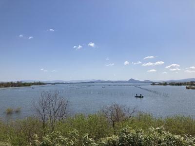 山ノ下湾から眺めた琵琶湖南湖 昨日からいい天気が続いてます(4月7日10時30分頃)