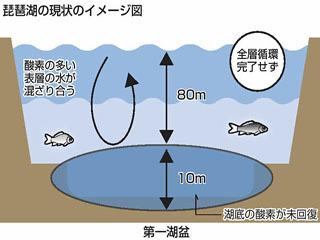全層循環が起こってない琵琶湖のイメージ図