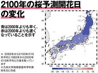 2100年の桜予測開花日の変化
