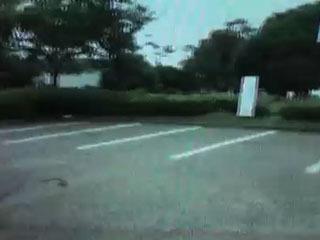 6月1日から解放された唐崎苑の駐車場