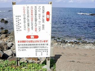 撒きエサ釣り禁止を呼びかける看板