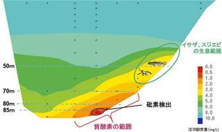 琵琶湖北湖の酸素濃度分布