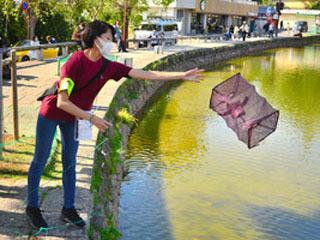 猿沢池の魚類調査に取り組む学生