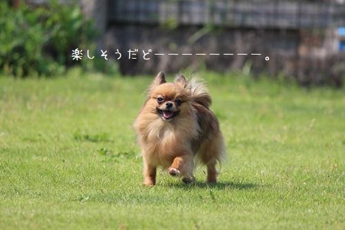 IMG_7743.jpg
