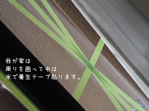 P9060035.jpg