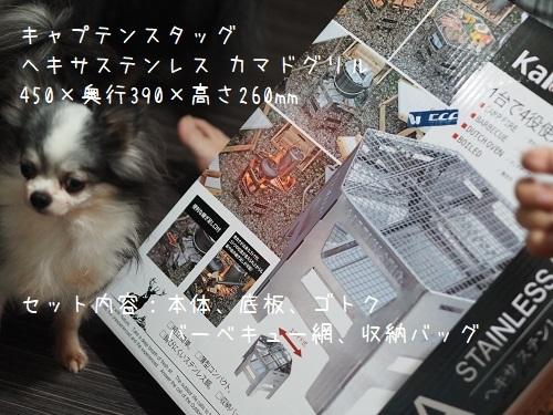 PA180153.jpg