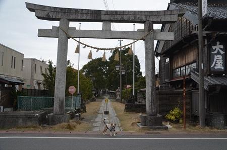 20200307夷隅神社01