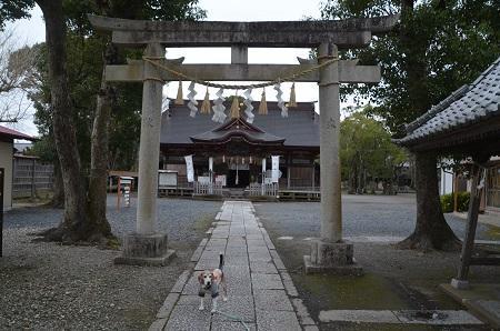 20200307夷隅神社09