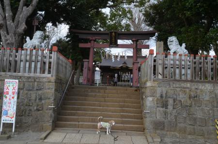 20200315麻賀多神社03