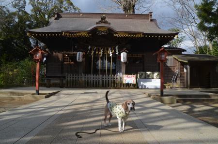 20200315麻賀多神社09