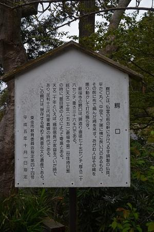 20200330最福寺16