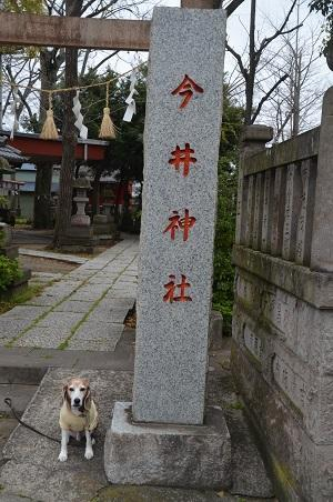 20200330今井神社01