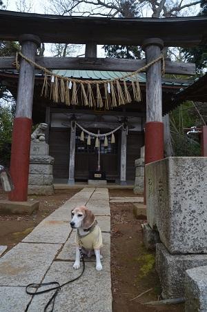 20200330香取神社03