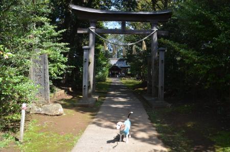 20200402熊野神社02