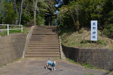 20200402熊野神社01