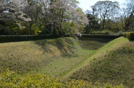 20200402佐倉の桜と桜城址公園21