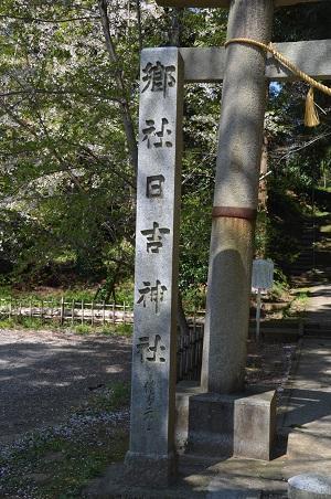 20200406日吉神社02