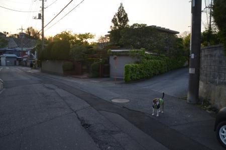 20200429番神道05