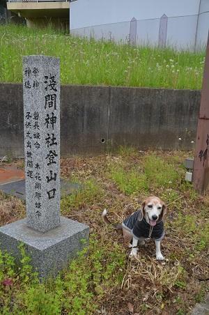 20200504浅間神社06