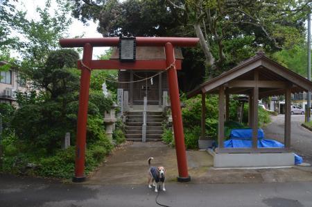 20200504浅間神社09