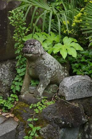 20200504浅間神社15