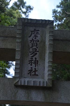 20200514大蛇麻賀多神社08
