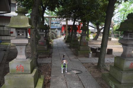 20200527今井神社03