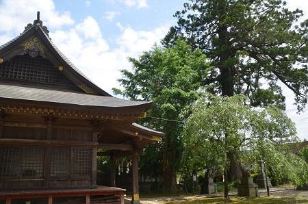 20200528松崎神社30