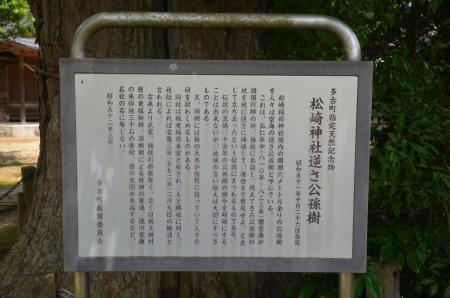 20200528松崎神社25