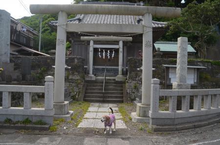 20200529金谷神社02