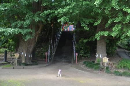 20200529古船浅間神社06