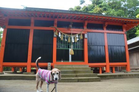 20200529古船浅間神社09