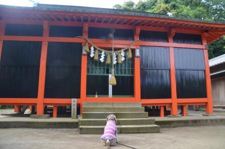 20200529古船浅間神社15