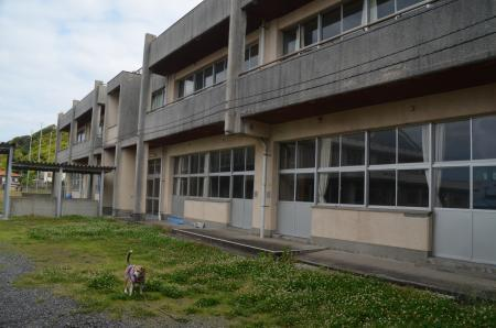 20200529金谷小学校05