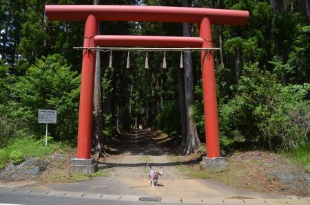 20200529三島神社03