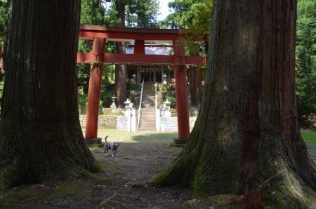 20200529三島神社12