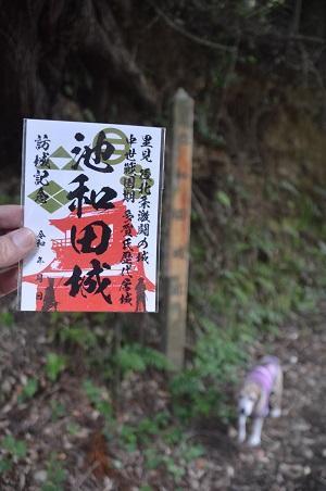 20200529池和田城03