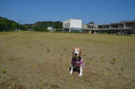 20200529竹岡小学校11